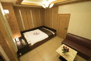 H Type Room 509